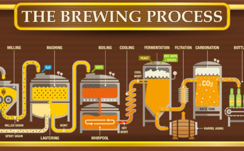 ビールの醸造工程